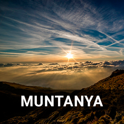 montana-ca